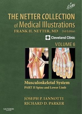 Iannotti, Joseph P.; Parker, Richard - The Netter Collection of Medical Illustrations: Musculoskeletal System - 9781416063827 - V9781416063827