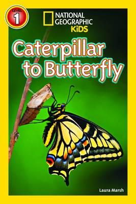 Marsh, Laura, National Geographic Kids - Caterpillar to Butterfly - 9781426315787 - V9781426315787