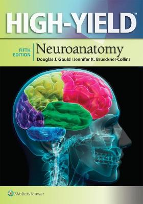Gould PhD, Douglas J., Brueckner-Collins PhD, Jennifer K. - High-Yield(TM) Neuroanatomy (High-Yield  Series) - 9781451193435 - V9781451193435