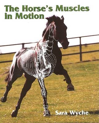 Wyche, Sara - The Horse's Muscles in Motion - 9781861264565 - V9781861264565