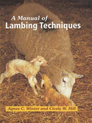 Cicely W. Hill, Anges C. Winter - A Manual of Lambing Techniques - 9781861265746 - V9781861265746