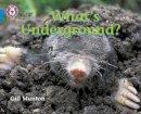 Munton, Gill - What's Underground - 9780007185863 - V9780007185863