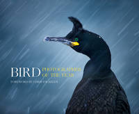 Bird Photographer of the Year - Bird Photographer of the Year - 9780008175238 - V9780008175238