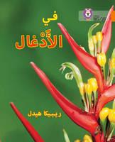 Heddle, Becca - In the Jungle: Level 6 (Collins Big Cat Arabic) - 9780008185596 - V9780008185596