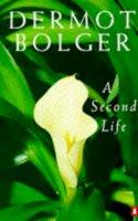 Bolger, Dermot - A Second Life - 9780140238792 - KTK0091024