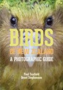 Scofield, Paul, Stephenson, Brent - Birds of New Zealand: A Photographic Guide - 9780300196825 - V9780300196825