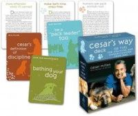 Cesar Millan - Cesar's Way Deck: 50 Tips for Training and Understanding Your Dog - 9780307396327 - V9780307396327