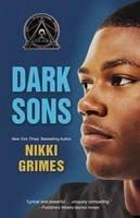 Grimes, Nikki - Dark Sons (Blink) - 9780310761501 - V9780310761501