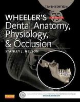 Nelson DDS  MS, Stanley J. - Wheeler's Dental Anatomy, Physiology and Occlusion, 10e - 9780323263238 - V9780323263238