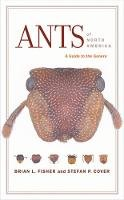 Fisher, Brian L., Cover, Stefan P. - Ants of North America: A Guide to the Genera - 9780520254220 - V9780520254220
