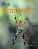 Beccaloni, Jan - Arachnids - 9780565092207 - V9780565092207