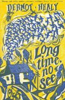 Healy, Dermot - Long Time, No See - 9780571210749 - KEX0307815