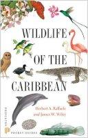 Raffaele, Herbert - Wildlife of the Caribbean - 9780691153827 - V9780691153827