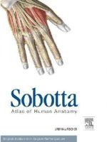 Waschke, Jens, Paulsen, Friedrich - Sobotta Atlas of Human Anatomy Package, 15th ed. English: Musculoskeletal system, internal organs, head, neck, neuroanatomy, 15e - 9780702052507 - V9780702052507