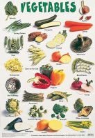 Schofield & Sims - Vegetables (Early Learning Science/Nature) - 9780721755243 - V9780721755243