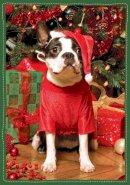 Galison - Santa's Little Helper Boxed Holiday Half Notecards - 9780735344150 - V9780735344150