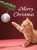 Galison - Christmas Kitty Boxed Holiday Full Notecards - 9780735344457 - V9780735344457