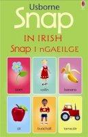 Boon, Dominika, Brooks, Felicity, Brooks, Felicity - SNAP CARDS IN IRISH - 9780746063378 - V9780746063378