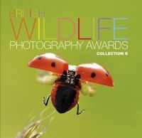 AA Publishing - British Wildlife Photography Awards: Collection 6: Collection 6 - 9780749577254 - V9780749577254