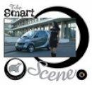 Saltmarsh, Julie, Crawford, Tom - The Smart Scene - 9780752442181 - V9780752442181