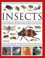 Walters, Martin - The Illustrated World Encyclopedia of Insects: A natural history and identification guide to beetles, flies, bees wasps, springtails, mayflies, ... crickets, bugs, grasshoppers, fl - 9780754819097 - V9780754819097