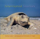 Lasky, Kathryn - Interrupted Journey: Saving Endangered Sea Turtles - 9780763606350 - KEX0264634