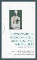 - Crossroads in Psychoanalysis, Buddhism, and Mindfulness - 9780765709370 - V9780765709370