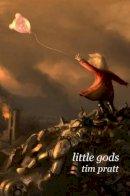 Pratt, Tim - Little Gods - 9780809556861 - KEX0249435