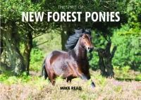 Read, Mike - The Spirit of New Forest Ponies - 9780857100757 - V9780857100757