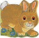 Twinn, Michael - Bunny (Pocket Pals (Safari Ltd)) - 9780859539074 - V9780859539074