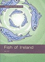 Ian Hill - POCKET GUIDES FISH OF IRELAND - 9780862819583 - KIN0032746