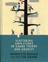 Elvang, Henriette, Huang, Yu-tin - Scattering Amplitudes in Gauge Theory and Gravity - 9781107069251 - V9781107069251