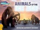 Hughes, Jon - Animals of the Ice Age Gold Band (Cambridge Reading Adventures) - 9781107551626 - V9781107551626