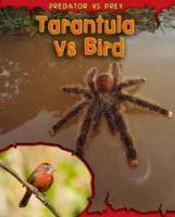 Chambers, Mary Meinking - Tarantula Vs Bird (Read Me: Predator Vs Prey) - 9781406221404 - V9781406221404