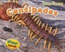Rissman, Rebecca - Centipedes (Creepy Crawlies) - 9781406241341 - V9781406241341