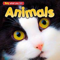 RISSMAN,REBECCA - ANIMALS - 9781406251456 - V9781406251456
