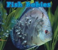 Veitch, Catherine - FISH BABIES - 9781406259315 - V9781406259315