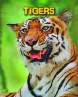 Claybourne, Anna - Tigers (Infosearch: Living in the Wild: Big Cats) - 9781406273540 - V9781406273540