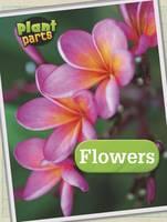 Waldron, Melanie - Flowers (Raintree Perspectives: Plant Parts) - 9781406274837 - V9781406274837