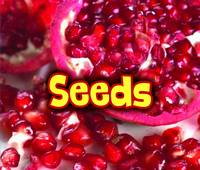 Throp, Claire - All About Seeds (Acorn: All About Plants) - 9781406284461 - V9781406284461