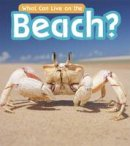Wilkins, John-Paul - What Can Live at the Beach? (Read and Learn: What Can Live There?) - 9781406285000 - V9781406285000
