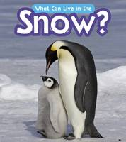 Wilkins, John-Paul - What Can Live in the Snow? (Read and Learn: What Can Live There?) - 9781406285048 - V9781406285048