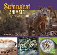 Gagne, Tammy - The Strangest Animals in the World (First Facts: All About Animals) - 9781406293159 - V9781406293159