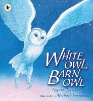 Davies, Nicola - White Owl, Barn Owl - 9781406365443 - V9781406365443