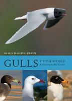 Klaus Malling Olsen - Gulls of the World - 9781408181645 - V9781408181645