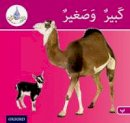 Hamiduddin, Rabab, Ali, Amal, Salimane, Ilham, Sharba, Maha - Arabic Club Readers: Pink Band: Big and Small (Arabic Club Red Readers) - 9781408524756 - V9781408524756