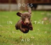 Bradley, Jack - Dogs in the Air - 9781409160717 - V9781409160717
