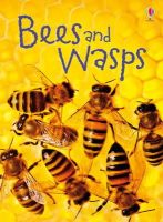 James MacLaine - Bees & Wasps (Usborne Beginners) - 9781409544876 - V9781409544876