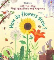 Daynes, Katie - Lift-The-Flap First Questions and Answers How Do Flowers Grow? - 9781409582137 - V9781409582137