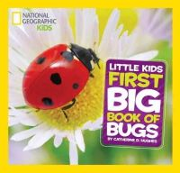 Hughes, Catherine D. - National Geographic Little Kids First Big Book of Bugs (First Big Books) - 9781426317231 - 9781426317231